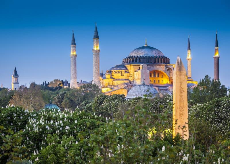 Sultanahmet Camii/moschea blu, Costantinopoli, Turchia immagine stock libera da diritti