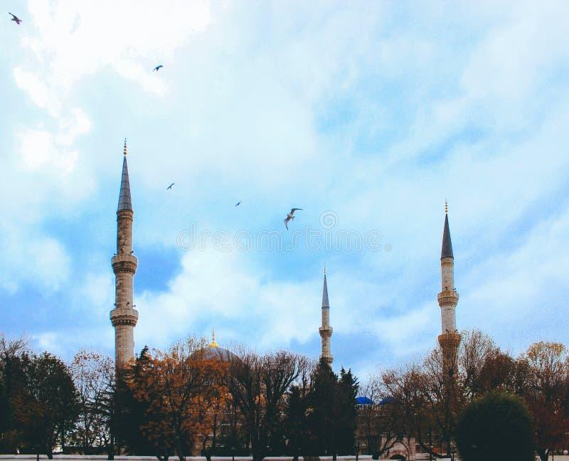 Sultanahmet meczet lub Błękitny meczet, widok od Sultanahmet kwadrata, Turcja, Istanbuł zdjęcia stock