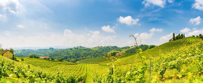 Sulztal, Styria/Αυστρία - 2 Ιουνίου 2018: Αμπελώνων Leibniz νότιο Styria περιοχής οδών κρασιού προορισμού περιοχής διάσημο, χώρα  στοκ φωτογραφίες με δικαίωμα ελεύθερης χρήσης