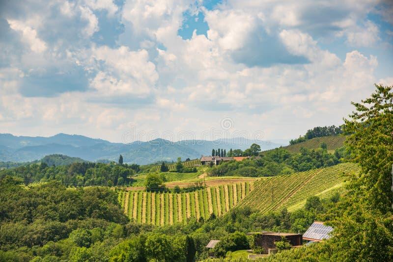 Sulztal, Styria/Αυστρία - 2 Ιουνίου 2018: Αμπελώνων Sulztal Leibniz νότιο Styria περιοχής οδών κρασιού προορισμού περιοχής διάσημ στοκ φωτογραφίες