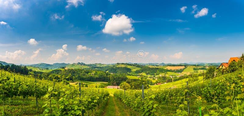 Sulztal, Styrie/Autriche - 2 juin 2018 : Secteur célèbre Styrie du sud de rue de vin de destination de région de Sulztal Leibniz  images libres de droits