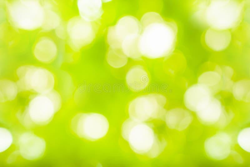 Sumário claro verde do fundo e do fundo da natureza fotografia de stock royalty free