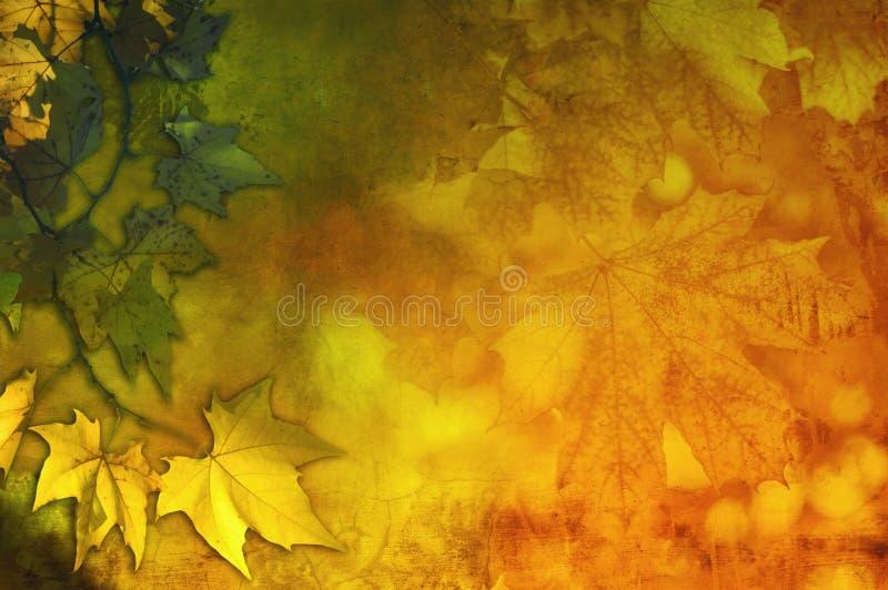 Sumário colorido do outono ilustração royalty free