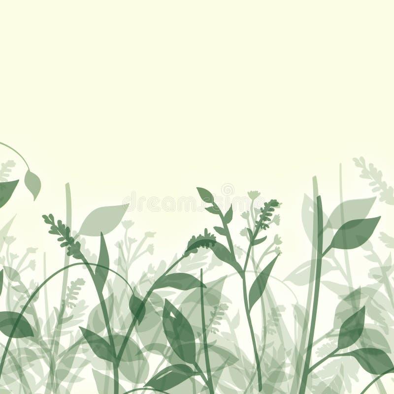 Sumário das plantas ilustração do vetor