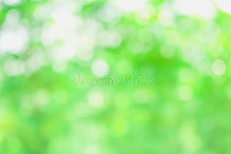 Sumário do fundo da luz do bokeh do borrão da cor verde na natureza foto de stock royalty free