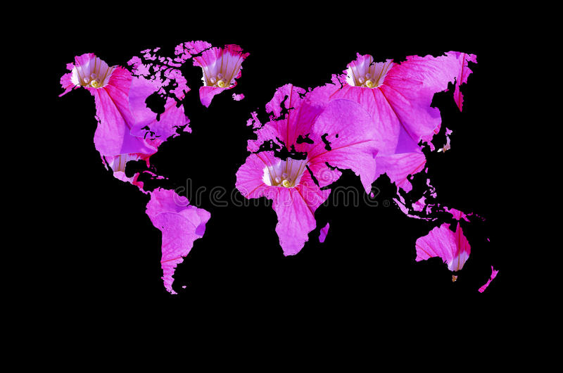 Sumário do mapa do mundo ilustração royalty free