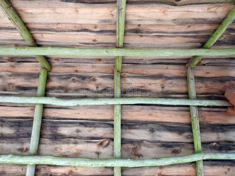 Sumário do telhado do mandril do verão fotos de stock royalty free