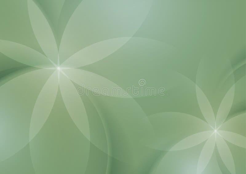 Sumário floral em Sage Green Background ilustração do vetor