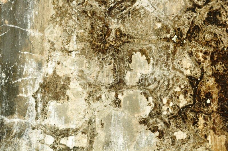 Sumário & fundos velhos da textura da parede do cimento do grunge fotografia de stock