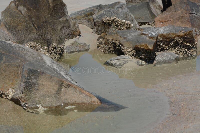 Sumário, quebra-mar do molhe na praia de Fernandina, parque estadual do rebitamento do forte, o Condado de Nassau, Florida EUA fotografia de stock