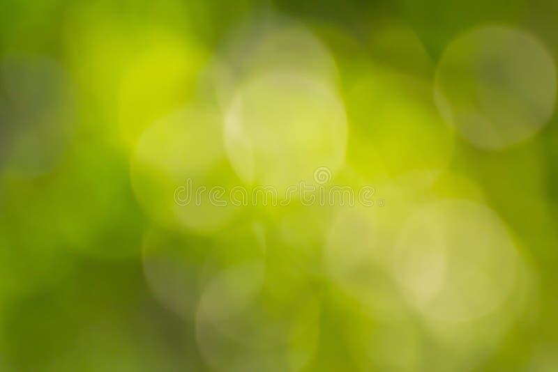 Sumário verde do bokeh imagem de stock royalty free