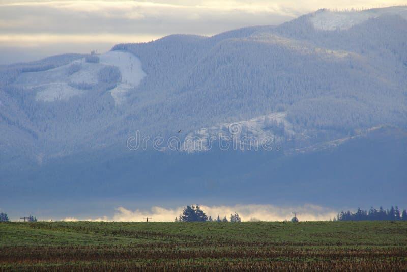 Sumas-Winter-Landschaft stockfoto
