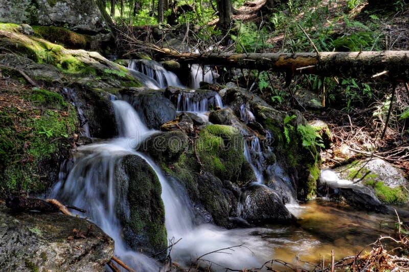 Sumava stream. A famous stream in Sumava stock photos