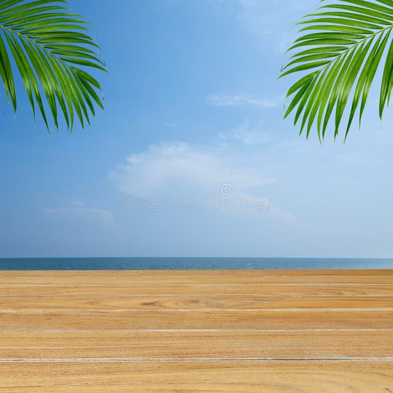 Sumer tropische strandpalmachtergrond stock afbeeldingen