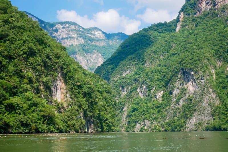 Sumidero jar - Chiapas, Meksyk obraz royalty free