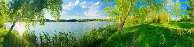 Summer湖在天空蔚蓝的全景视图 免版税图库摄影