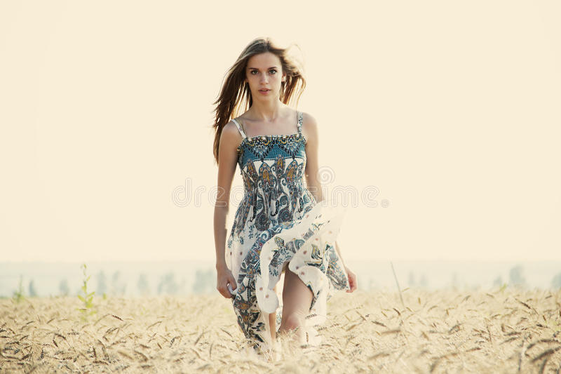 Summer. Happiness, summer, girl in the meadow royalty free stock images