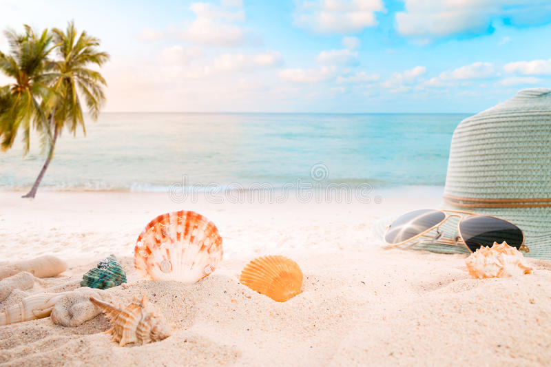 Summer accessories on sandy in seaside summer beach. With starfish, shells, coral on sandbar and blur sea background. Concept of recreation in summertime on royalty free stock image