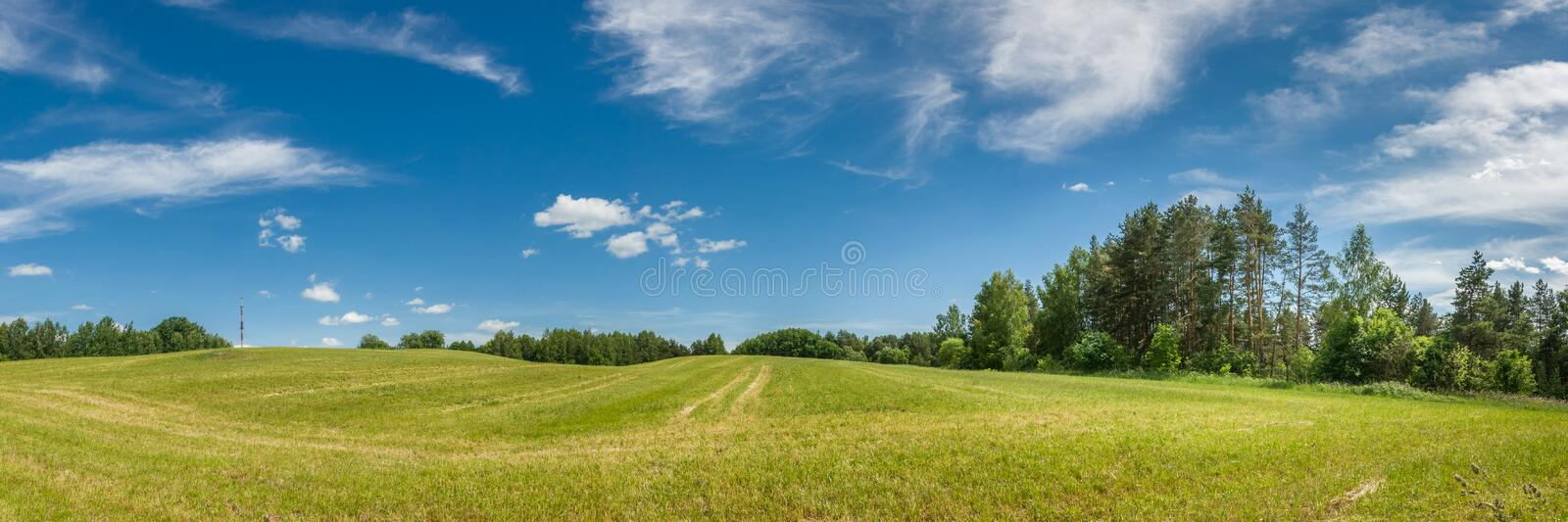 summer agricultural landscape. panoramic view of a hilly field under a blue cloudy sky royalty free stock image