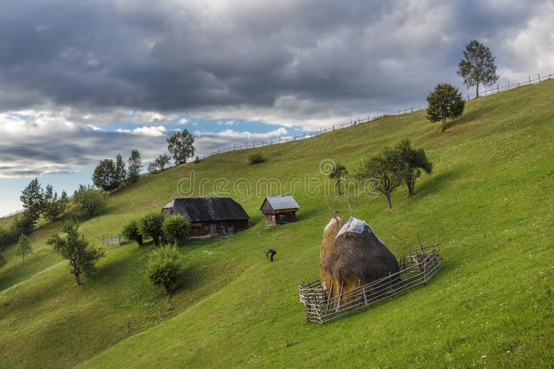 Summer alpine landscape with green fields and haystacks, Bran, Transylvania, Romania stock images