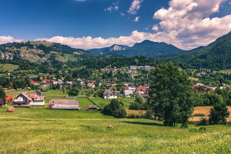 Summer alpine Transylvania landmark, landscape with green fields royalty free stock photo
