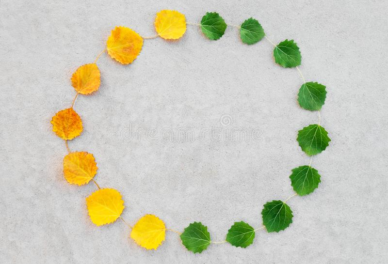 Summer and autumn leaves circle. Change of seasons. Summer and autumn leaves forming a circle, on concrete background. Nature cycle stock image