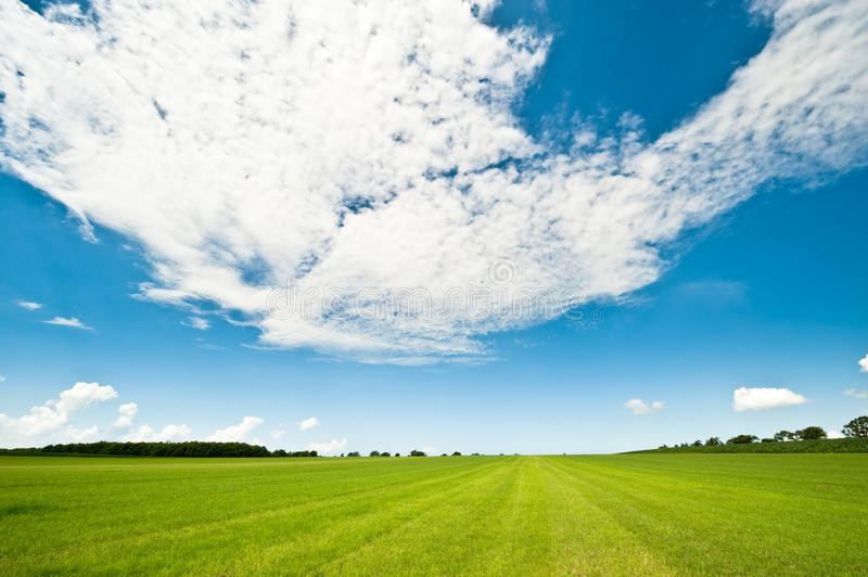 Download Summer background stock image. Image of blue, grass, farming - 10152161