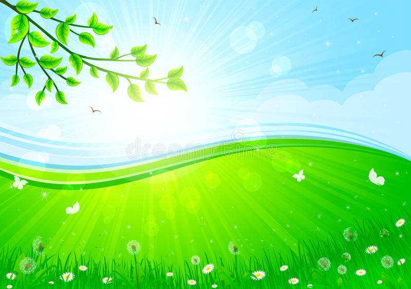 Download Summer background stock vector. Image of branch, light - 23165827