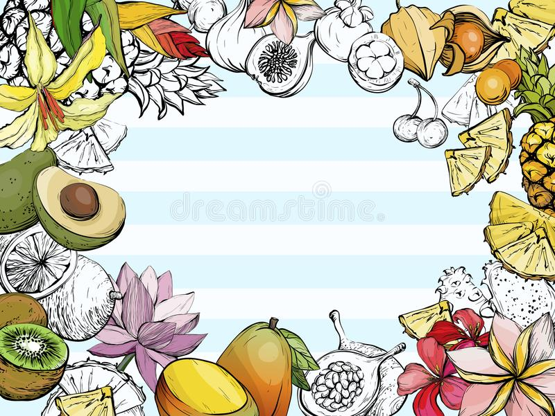 Summer background with fruit and flowers royalty free illustration