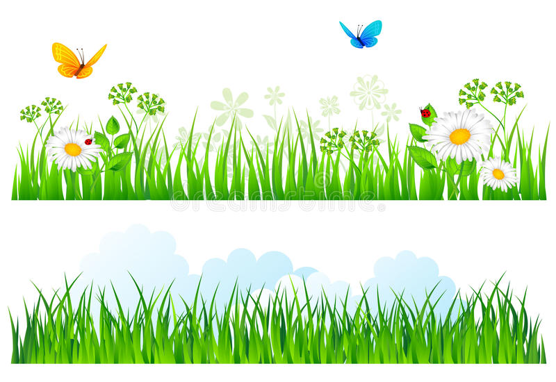 Summer background with grass royalty free illustration