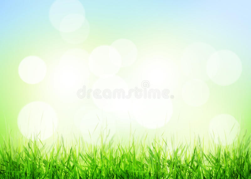 Summer background with grass and sunny bokeh royalty free stock photos