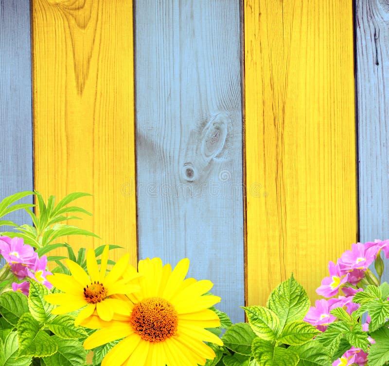 Download Summer Background Stock Images - Image: 29727714