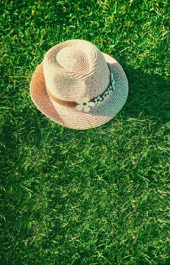 Summer background Pink sunhat on green grass. Pop art design, creative summer party. Minimalism. stock photography