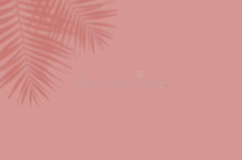 Summer background of shadows branch leaves on a wall for overlaying a photo or mockup royalty free stock photos