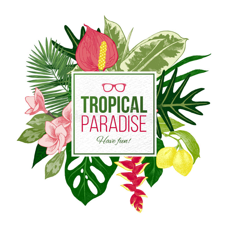 Summer background with tropical plants and flowers vector illustration