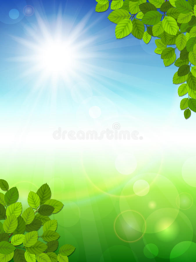 Free Summer Background With Green Leaves Royalty Free Stock Photo - 29889495
