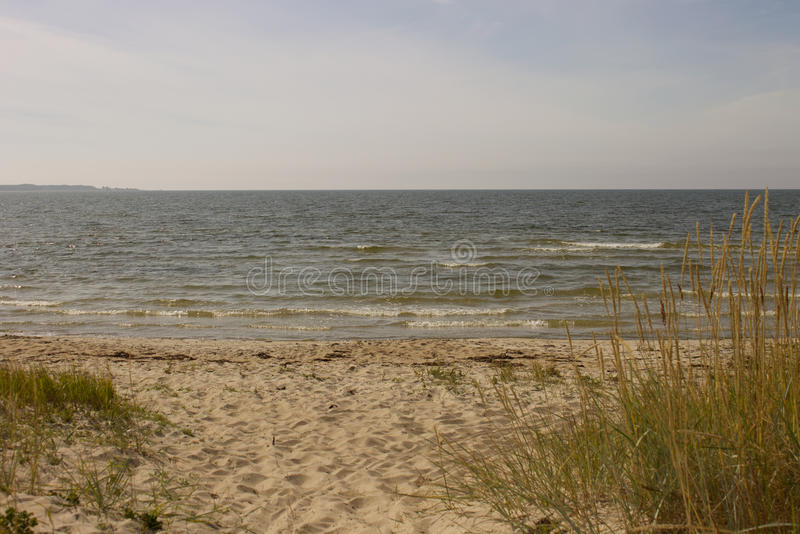 Summer on Baltic Sea stock image