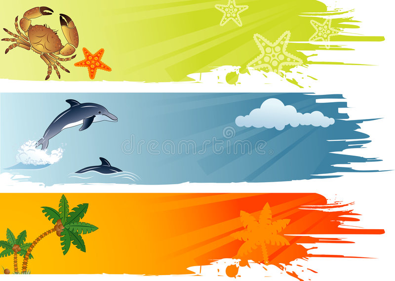Summer banner. Three summer banner with palm tree, coconut, dolphin, crab, starfish, vector illustration