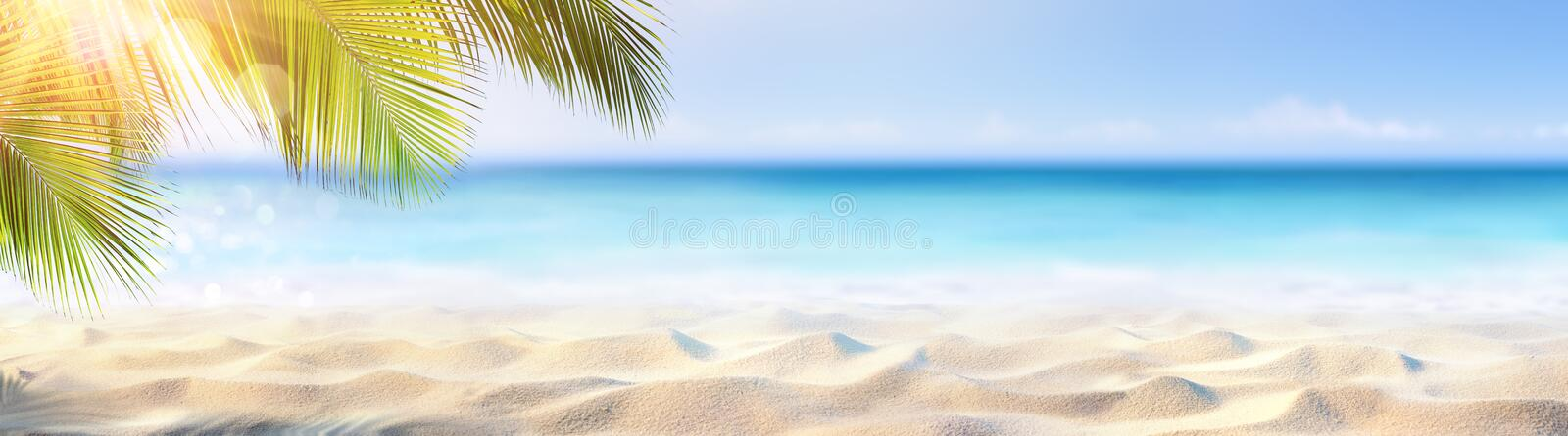Summer Banner - Sunny Sand With Palm Leaves royalty free stock image