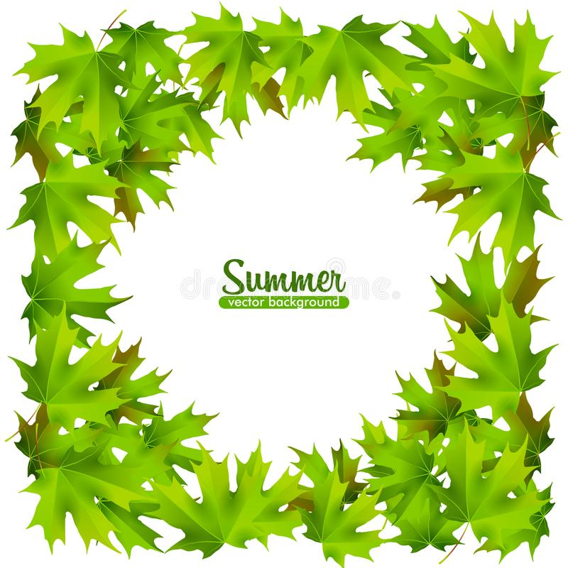 Summer banners with colorful and green leaves. vector illustration