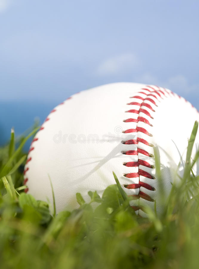 Download Summer Baseball Royalty Free Stock Photo - Image: 17029185