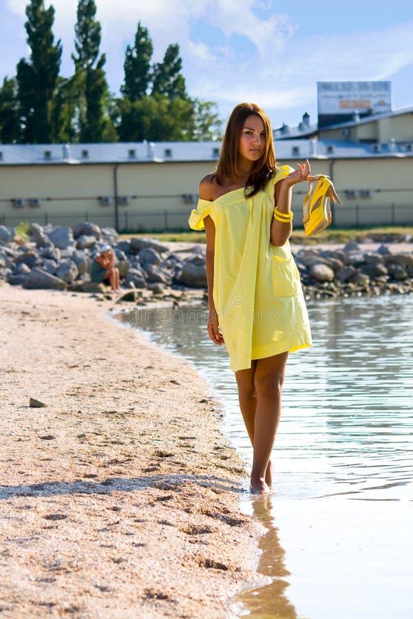 Summer beach royalty free stock photo