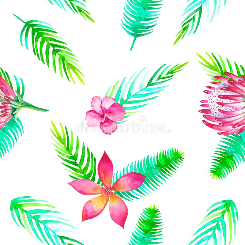Summer beach cheerful seamless pattern wallpaper of tropical green leaves jungle floral romantic elements. Protea and royalty free illustration