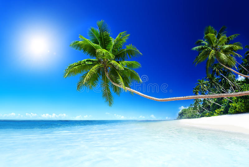 Summer Beach Tropical Paradise Seascape Concept.  stock photo