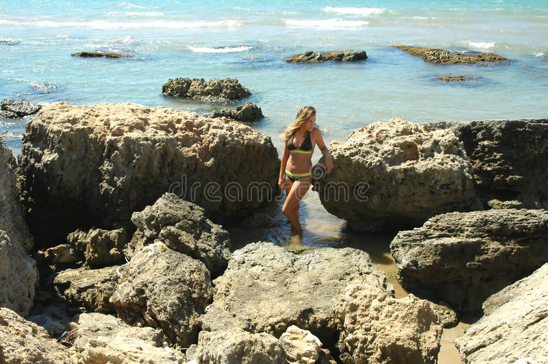Summer Beauty Stock Images
