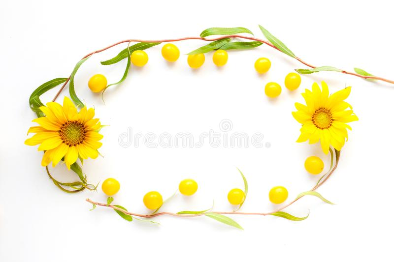 Summer beauty mockup of flowers of sunflower, cherry plum and twigs decorative willow on a white background,copy space stock images