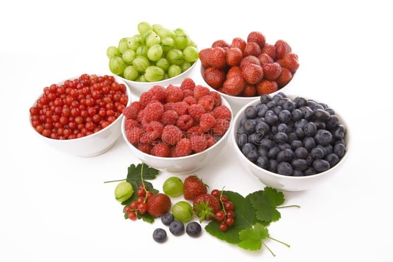 Summer berries royalty free stock photo