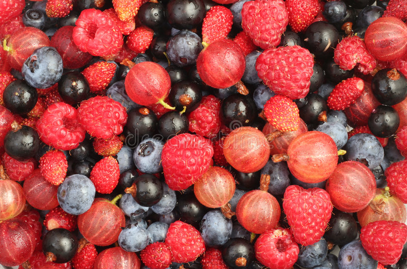 Summer berries background royalty free stock images