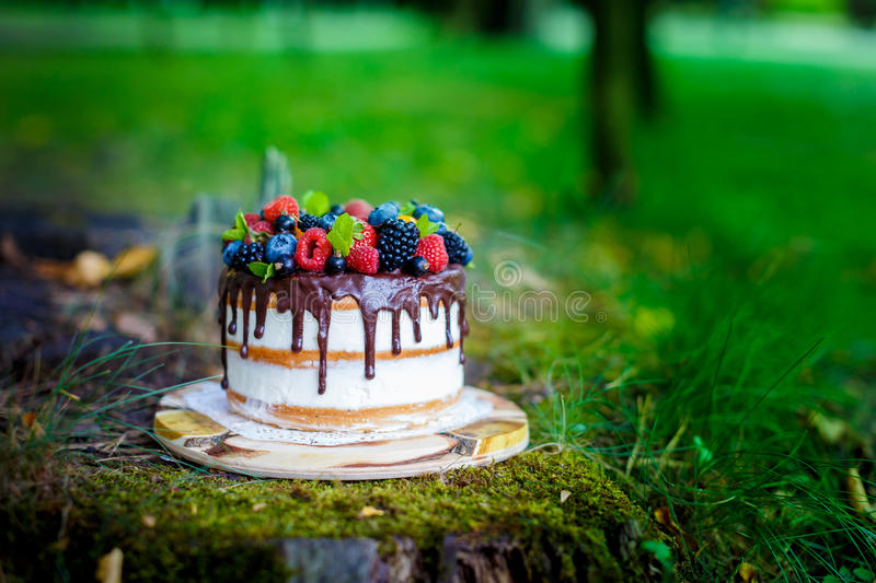 Summer berry cake royalty free stock images