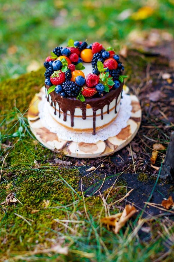 Summer berry cake stock photo